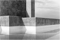 Between Leafs by Kim de Molenaer at Eduard Planting Gallery