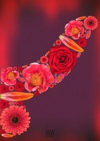 Bloom up - Aleksander Willemse - Eduard Planting Gallery