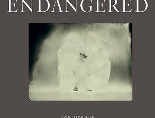 Erik Hijweege – Endangered