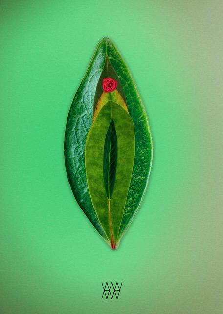 LeaveLust - Aleksander Willemse - Eduard Planting Gallery