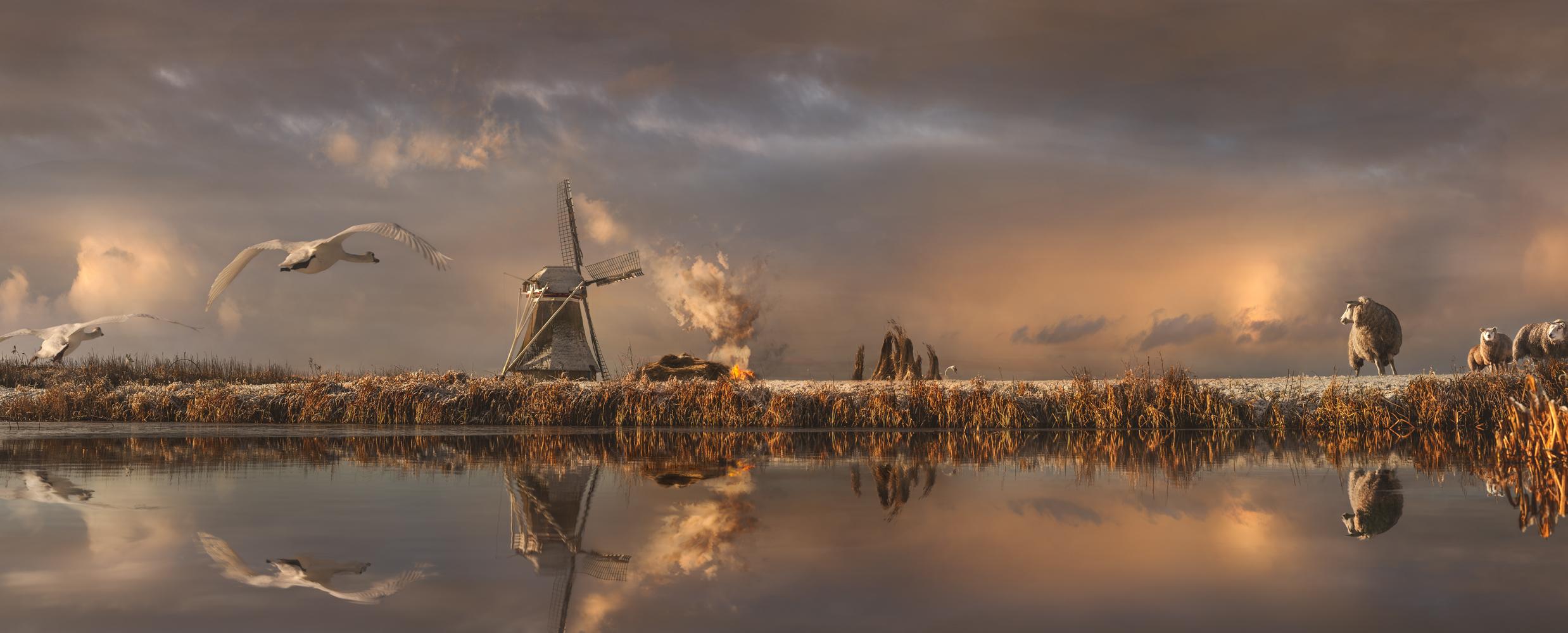 © Maartje Roos - Rietsnijders