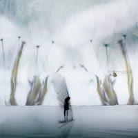 Mirjam Appelhof - Eduard Planting Gallery