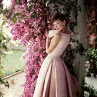 Audrey Hepburn - © Norman Parkinson - Eduard Planting Gallery
