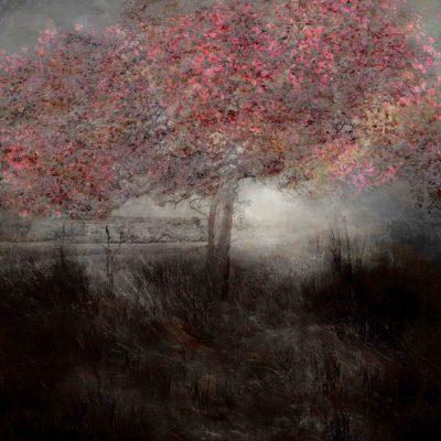 ©Saskia Boelsums - Landscape #109 - Eduard Planting Gallery