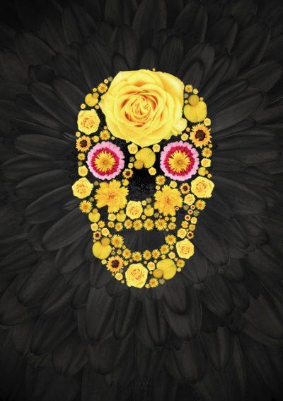 Skull - Aleksander Willemse - Eduard Planting Gallery