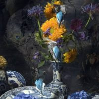 Stilllife with Sunflowers - Hans Withoos -Eduard Planting Gallery