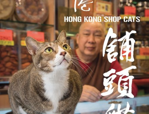 Marcel Heijnen – Chinese Whiskers: Hong Kong Shop Cats